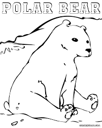 polar bear coloring pages coloring pages to download and print