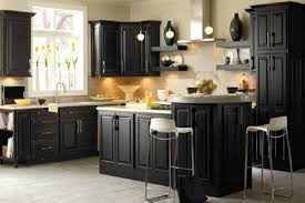 black kitchen cabinets ideas kitchen cabinets colors smith design black kitchen