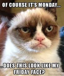 Funny Memes About Monday - 15 classic funny monday memes sbn