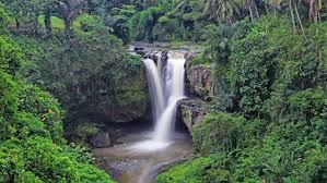 famous waterfalls one of the most famous waterfalls in bali is tegenungan