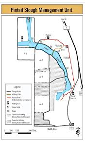 Lake Havasu Map Pintail Slough Unit We U0027ve Moved To Www Legallabrador Org