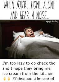 Funny Home Alone Memes - when home alone and hear anose i m too lazy to go check tho and i
