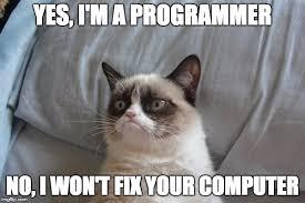 Computer Programmer Meme - grumpy cat bed meme imgflip