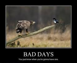 Bad Day Meme - it s gonna be one of those days very demotivational