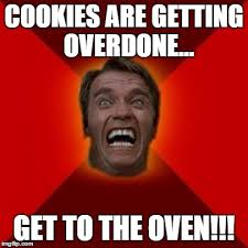 Arnold Schwarzenegger Memes - arnold schwarzenegger baking imgflip