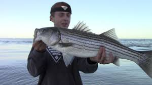 offshore fishing in cape cod youtube