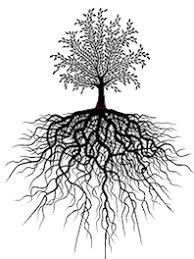 tree symbolism ph dezign tree of life pendants