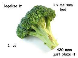 420 Blaze It Meme - image 518678 420 blaze it know your meme