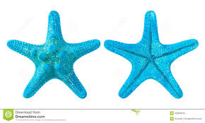 suggestions online images of clipart starfish blue