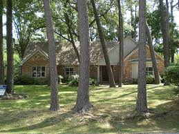 donna olsson greenwood king properties