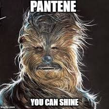 Chewbacca Memes - you can shine imgflip