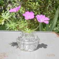 Frog Flower Vase Shop Art Deco Glass Vase On Wanelo
