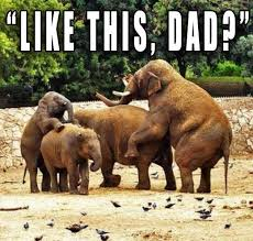 Father And Son Meme - funny pictures 18 crazy lol wtfs bad family photos random humor