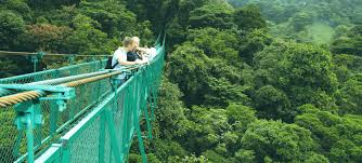 costa rica packages arenal santa teresa beach rio celeste
