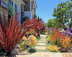 Tropical Plants Gardens Arid Roger S Gardens Ca Friendly Design Ideas Garden Trends