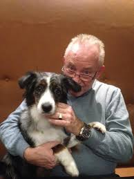 australian shepherd 1 jaar jaak de bodt de jaak twitter