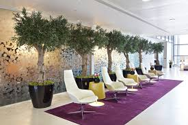 office plant and flower displays london u0026 nationwide