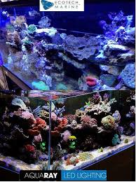 led reef lighting reviews radion versus tmc aqua ray ho led aquarium lights