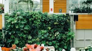 cuisine compl鑼e castorama estádio governador magalhães pinto inhabitat green design
