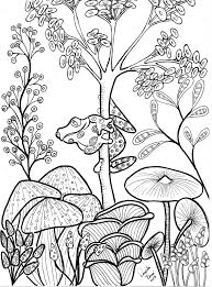cute tree frog and mushrooms coloring page floral coloring books