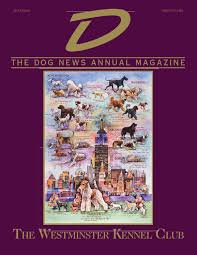 afghan hound attack d the dog news annual 2015 by dn dog news issuu