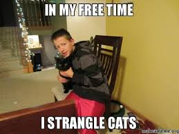 Make A Meme For Free - in my free time i strangle cats make a meme