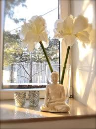 Spiritual Home Decor Best 25 Buddha Decor Ideas On Pinterest Buddha Living Room