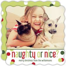 pet holiday cards dog holiday cards cat holiday cards