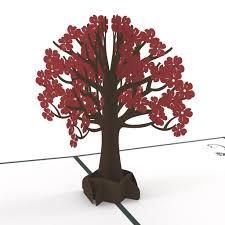 pop up tree dogwood tree dogwood trees cricut and cards