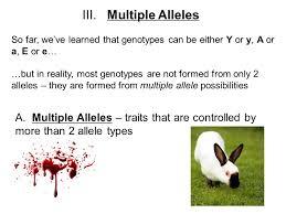 mendelian genetics 3 aim how do complex heredity patterns