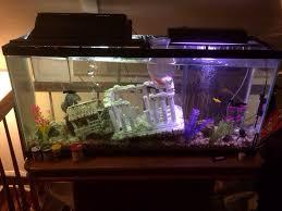 download types of fish tanks stabygutt