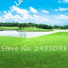 compare prices on golf lawn ornaments shopping buy low