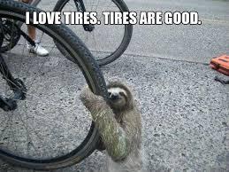 Best Sloth Memes - funny sloth memes 03