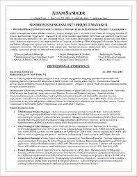 sample resume business analyst kyc analyst resume free resume example and writing download resume format for kyc analyst