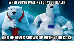 Coke Bear Meme - when you re waiting for your dealer weknowmemes
