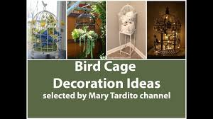 bird cage decoration ideas youtube