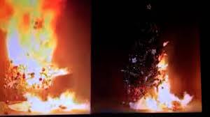 Fire Retardant Spray For Christmas Decorations by Fireproof Christmas Tree 1 800 333 9197 Fireproofing Xmas Trees