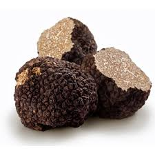 where can you buy truffles fresh burgundy truffles at earthy delights