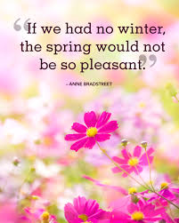 30 best spring quotes sayings about spring