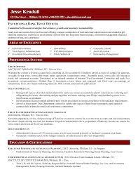 sample resume for bankers u2013 topshoppingnetwork com