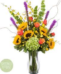 Images Flowers Florist Austin Tx Freytag U0027s Florist Voted Best Austin Florist
