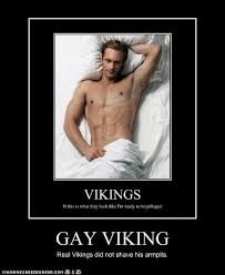 Vikings Meme - gay viking cheezburger funny memes funny pictures