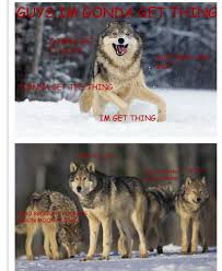Moon Moon Meme - guy s werewolf name is moon moon internet weighs in 20 photos