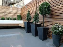perfect decoration outdoor privacy ideas agreeable design ideas