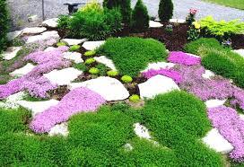 winter flower garden border gardening clipart black and white