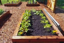 brokohan garden ideas page 23 raised vegetable garden bed kits
