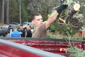 oh christmas tree trees for troops provides military families