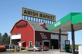 minnesota amish
