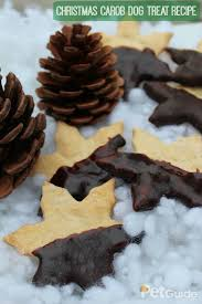 christmas carob dog treat recipe stockings homemade and health