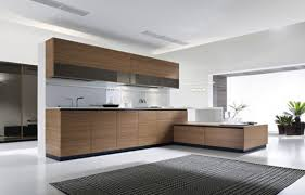 Kitchen Range Hood Design Ideas by Black And White Modern Kitchen Designs Bronze Arch High Single
